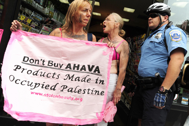 Members of the Stolen Beauty campaign demonstrate in Washington 2009.jpg